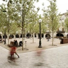 #6 Effectively Manage Public Spaces